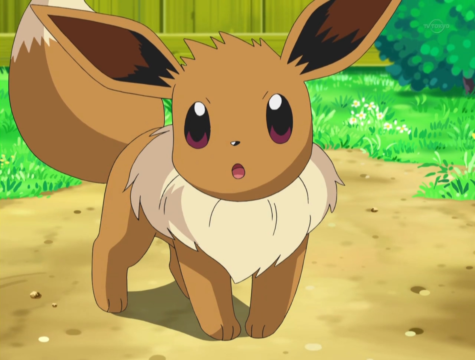 & 3 Easy Eevee Costumes For Pokemon Fans Of All Ages