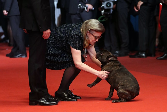 CANNES, FRANCE - MAY 14:  Carrie Fisher and her dog Gary attend 'The Handmaiden (Mademoiselle)' premiere during the 69th annual Cannes Film Festival at the Palais des Festivals on May 14, 2016 in Cannes, France.  (Photo by Andreas Rentz/Getty Images)