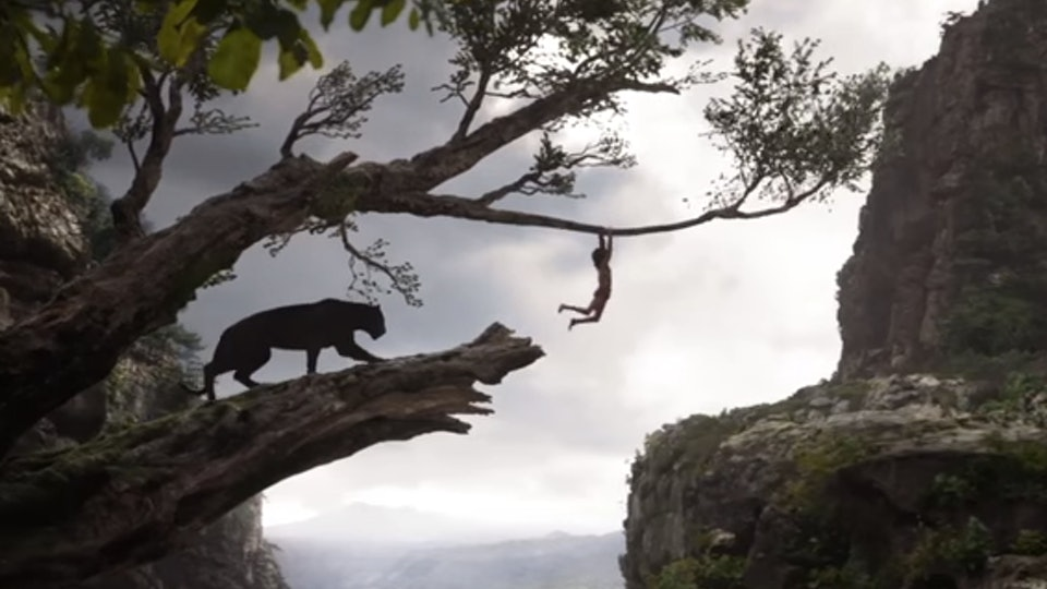 Where Was The Jungle Book Filmed The Jungle Background Almost Seems Real
