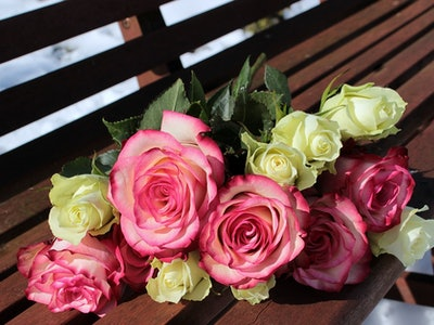 bouquet of roses on bench