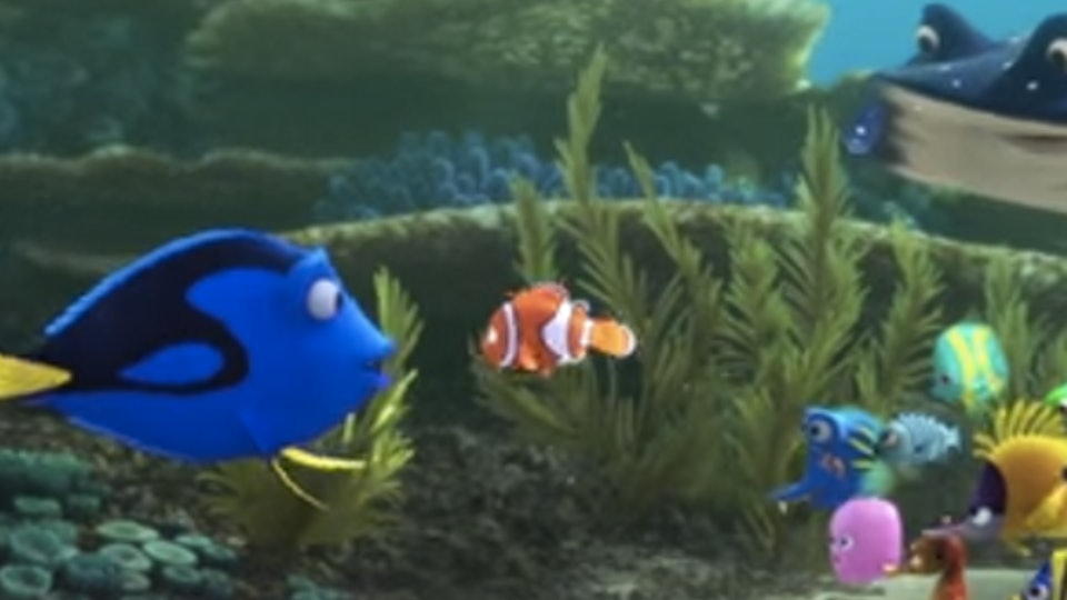 Are Any Of The Finding Dory Characters Endangered