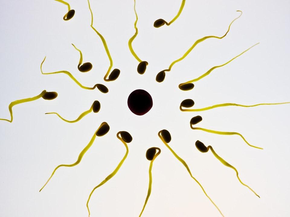 Female despression caused by no sperm