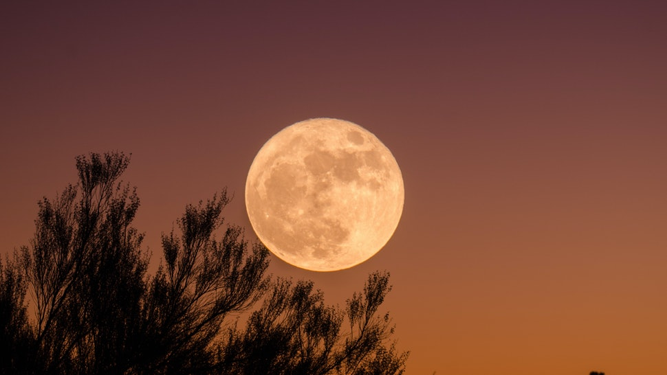 What Does The Pink Moon Mean Here S You Need To Know About April Full
