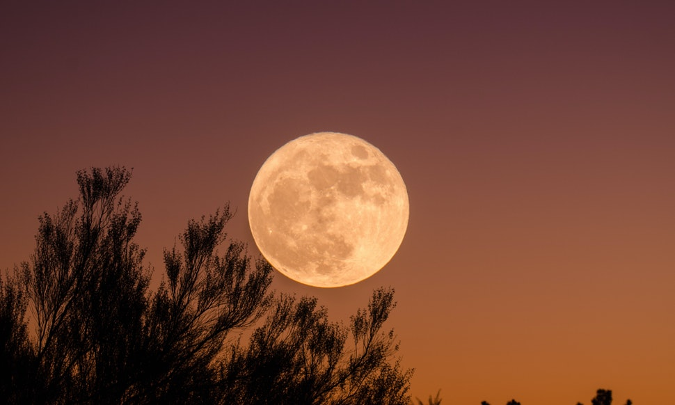 What Does The Pink Moon Mean Heres What You Need To Know About