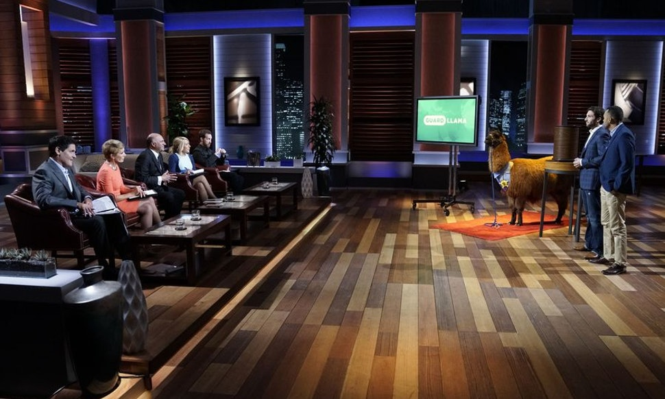 Where To Buy Guard Llama From Shark Tank Since It Can Help You