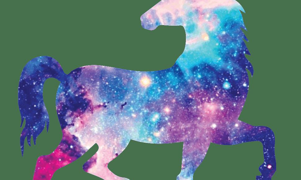 Glitter Box Cat
