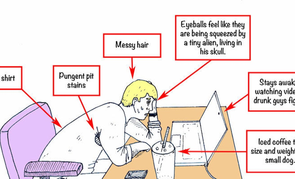This Is What The Detailed Anatomy Of A Summer Intern Looks Like