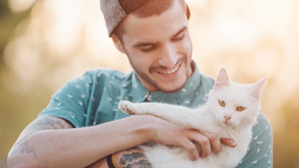 Why Women Should Date Cat Men