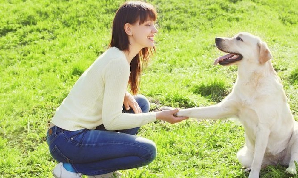 This Woman Adopted An Entire Dog Shelter And The Reason