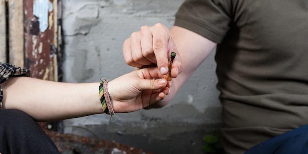 marijuana seeds japan
