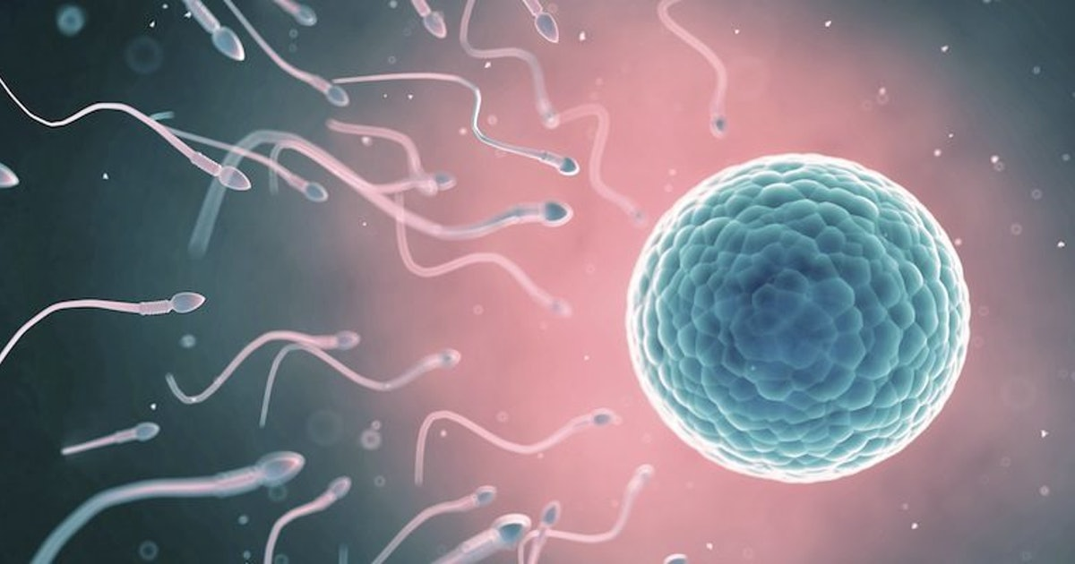 Sex movies scientists find clue sperm infertility cells cure men women thick
