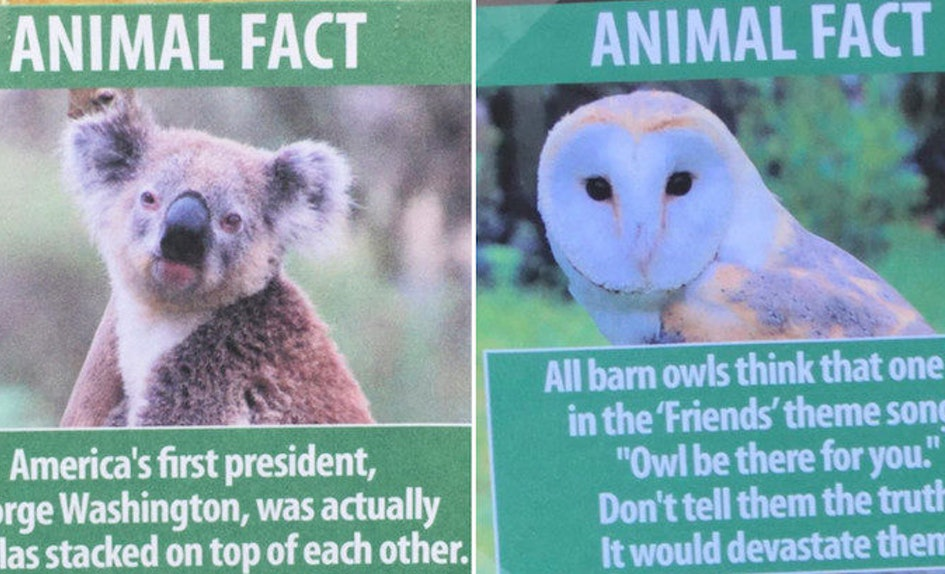 this guy trolled la zoo by replacing animal signs with hilarious