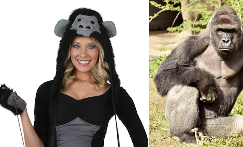 this halloween you can be the sexy harambe of every frat bros dreams