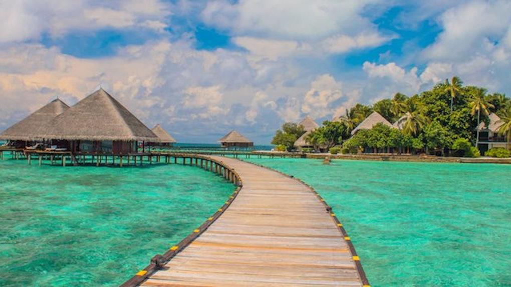 Bonuscode Tropical Island
