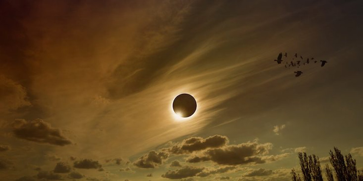 15 Photos Of The Solar Eclipse That Will Seriously Take Your Breath Away
