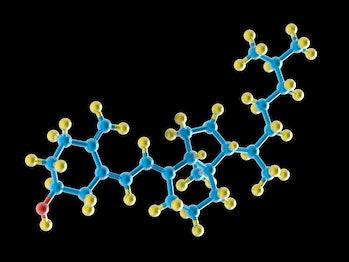molecular model of vitamin D