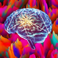 Study reveals what happens to the brain on LSD