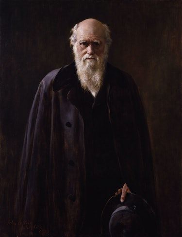 File:Charles Robert Darwin by John Collier.jpg - Wikimedia Commons