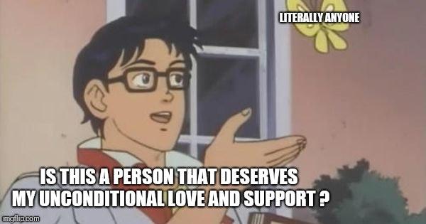 support pigeon meme