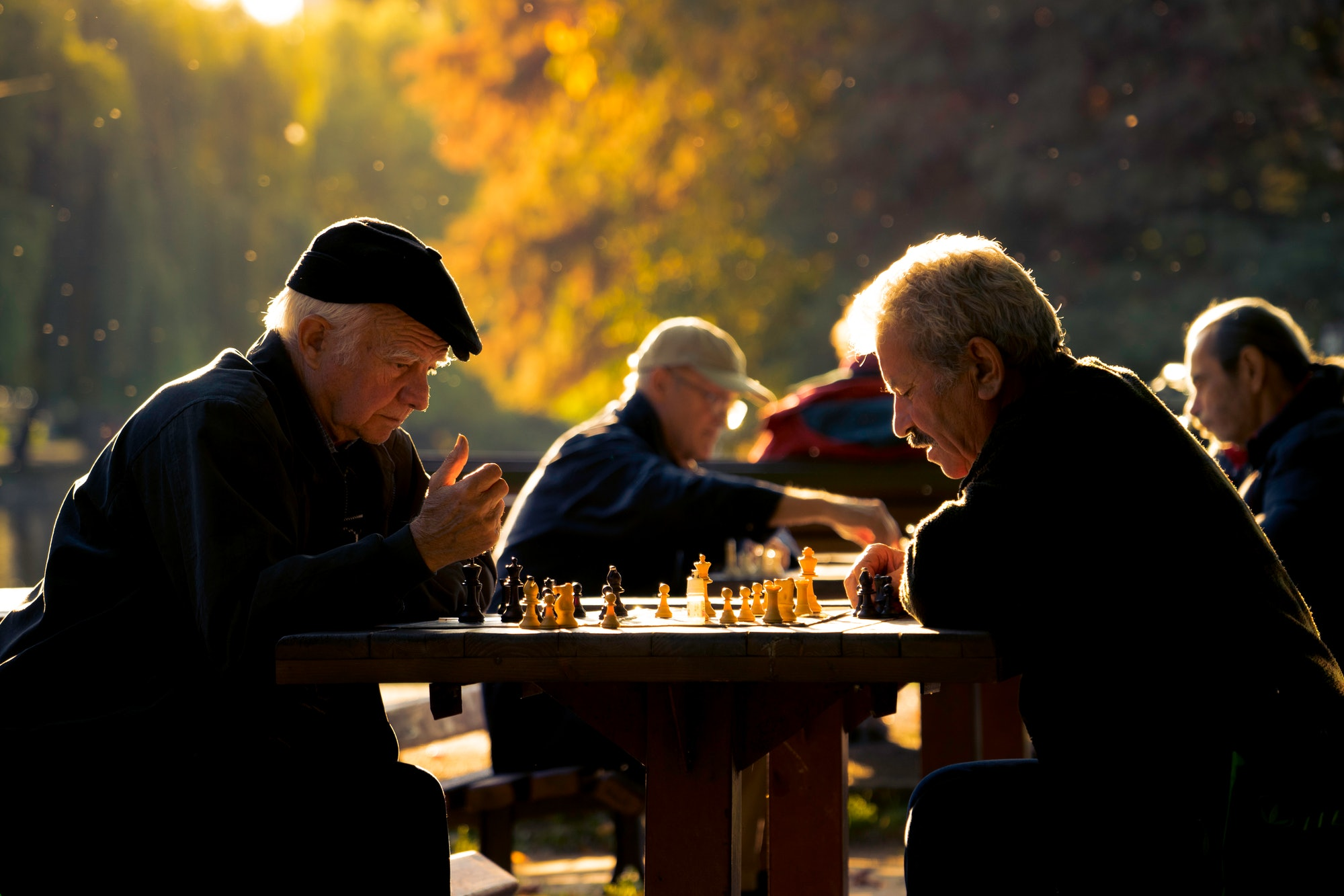 Is there a connection between TOR, nutrition, and diseases of old age?