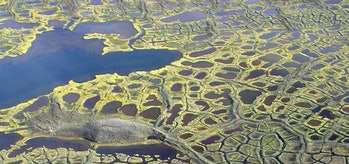 Carbon seeping up from the thawing permafrost turns lakes and ponds brown.
