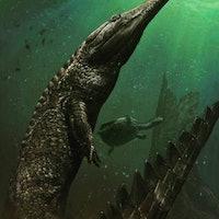 Machimosaurus Rex: Paleontologists Find Largest Marine Crocodile Ever