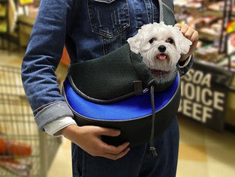 Small Pet Travel Carrier