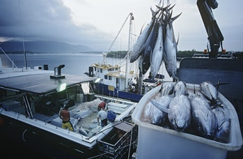 As tuna stocks drop, the international community is waking up to the fact that the ocean is not limitless.