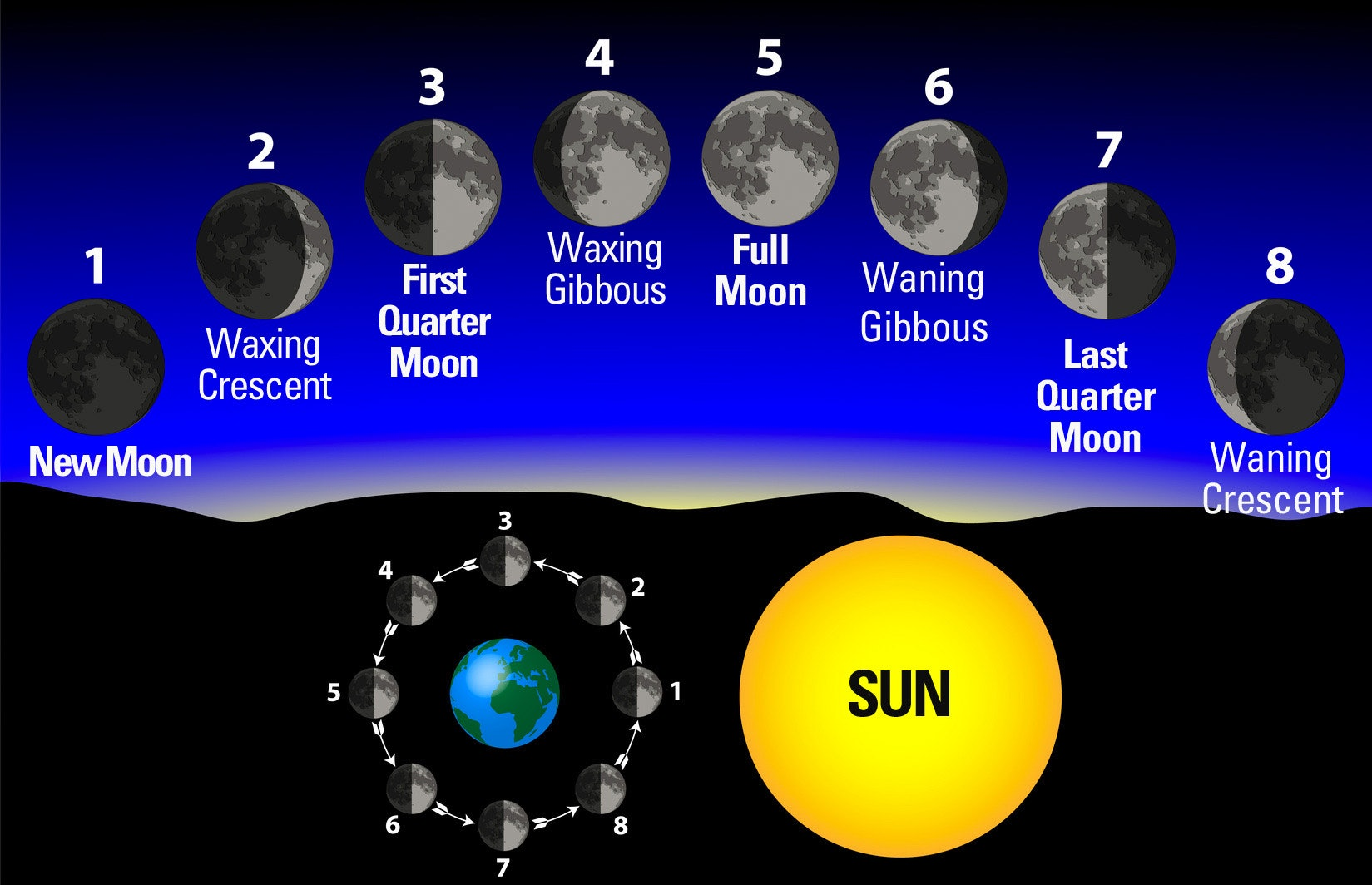 The 29.5 day lunar cycle CREDIT: The Farmers' Almanac