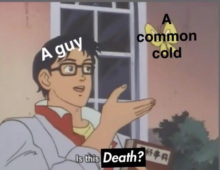 cold pigeon meme