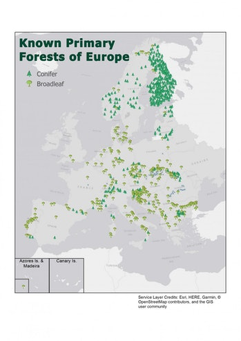 The first map of Europe's last wild forests. The map identifies more than 3.4 million acres in 34 European countries.