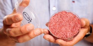 Lab-Grown Meat: Beyond Burgers, the 7 In-Vitro Foods Coming to Plates