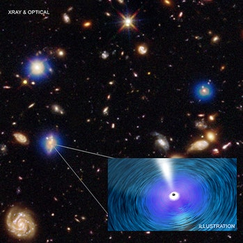 The growth of the biggest black holes in the Universe is outrunning the rate of formation of stars in the galaxies they inhabit, according to two studies using data from Chandra and other telescopes.
