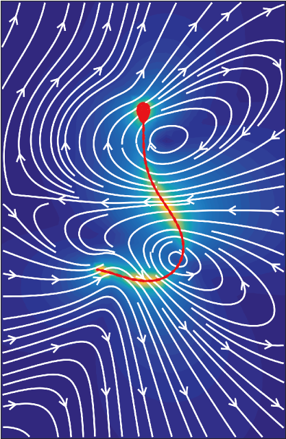sperm bendiness illustration fertility movement