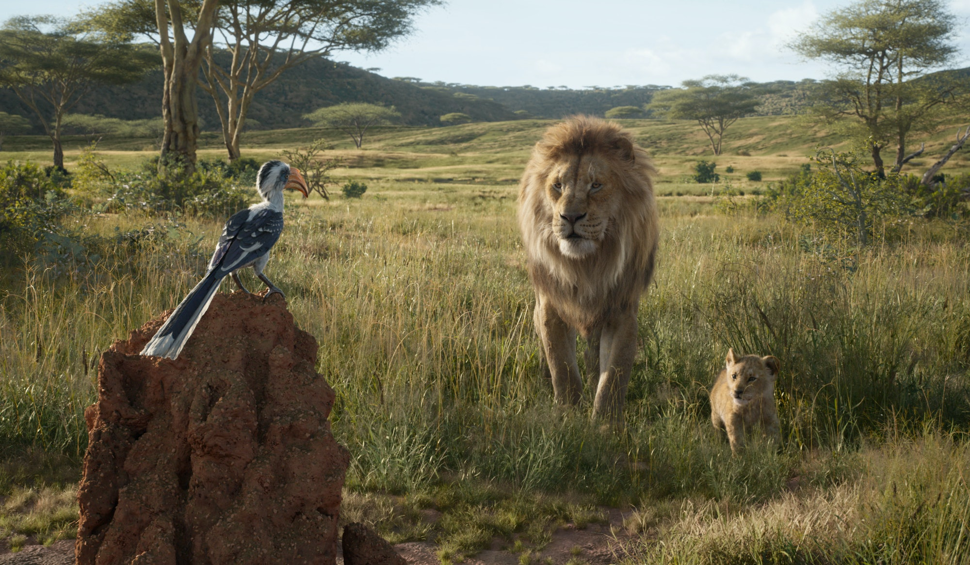 The Lion King Disney Review