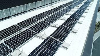 Solar Panels Basketball LA Lakers UCLA Vaha
