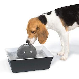 PetSafe Drinkwell Seascape Dog Pet Fountain