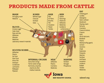 Iowa Beef Industry Council