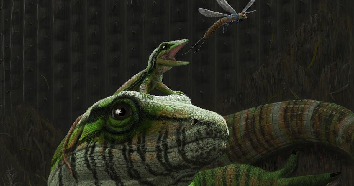 Ancient lizard dad bones reveal earliest example of good parenting