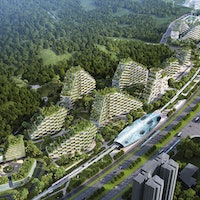 The 'Liuzhou Forest City' Will Absorb 10,000 Tons of Carbon Every Year