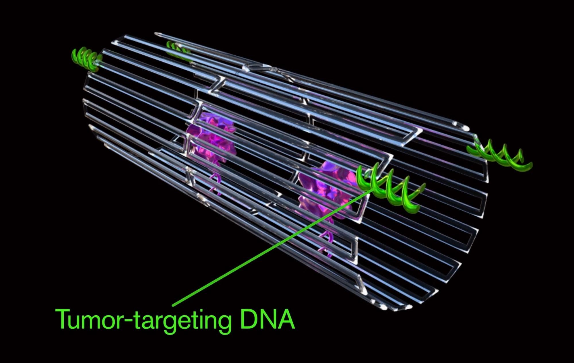 DNA origami nanorobot