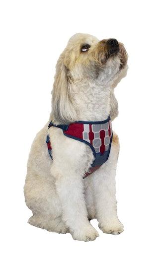 Marvel Comics Spiderman & Captain America Dog Harnesses