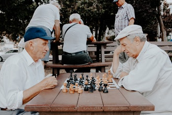 Over a lifetime, intelligence and practice are impossible to disentangle as factors that contribute to a chess player's skill level.