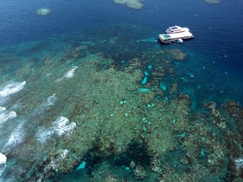 Great Barrier Reef - view from helicopter (10)