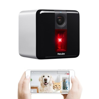 Petcube Play Smart Pet Camera with Interactive Laser Toy
