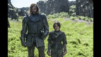 The Hound Arya