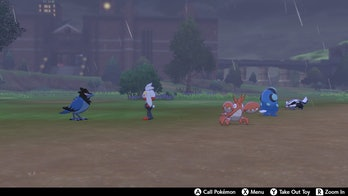 Pokemon at Camp Pokemon Sword and Shield