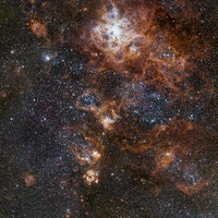 Tarantula Nebula: This Is the Sharpest Image Ever of the Breathtaking Stars