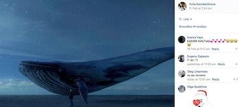 blue whale challenge