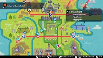Bridge Field Zone Pokemon Sword and Shield